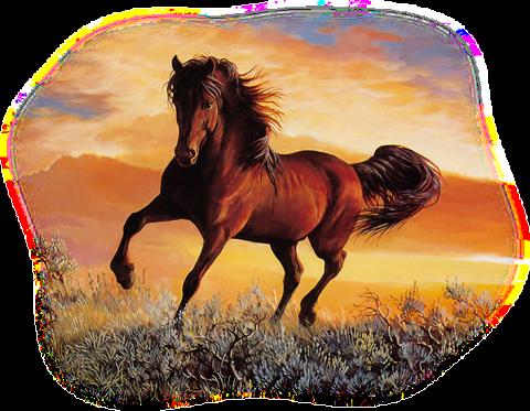 Tubes et images chevaux