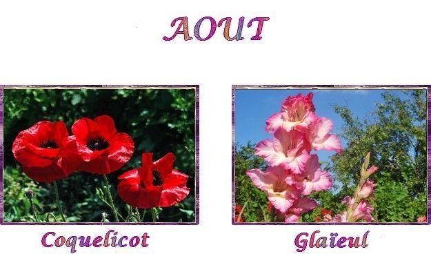 fleurs selon mois de naissance - août